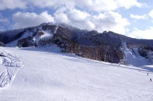 スキー場外観